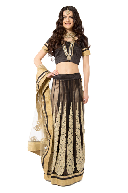 Net Black-Gold Embroidery Saree